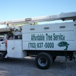 Affordable Tree Service Truck