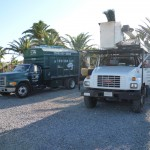 Affordable Tree Service Trucks