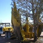 Tree Removal with Spade Truck