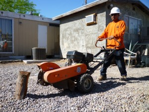 Affordable Tree Service Crew Member with Stump Grinder